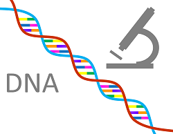 dna-1020670_1280.png